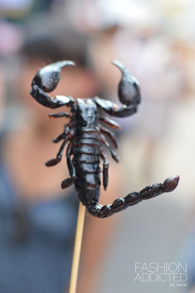 thailand-scorpion