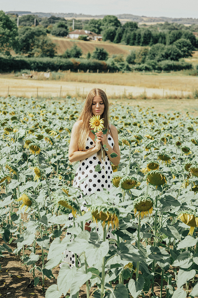 sunflower-field-london-blogger-4